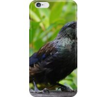 Feathers of Wonder iPhone Case/Skin
