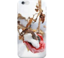 Cared For From Above iPhone Case/Skin