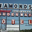 DIAMONDS MOTEL by Paul Butler