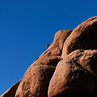 Rock climber by Alex Preiss