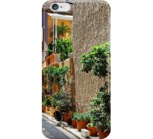 Are we in Provence Yet? Yes We Are! iPhone Case/Skin