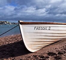Freddie II At Shaldon, Devon  by Susie Peek