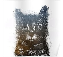 Gray cat Lucky Poster