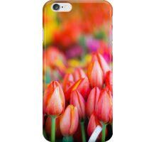 Tulip Market iPhone Case/Skin