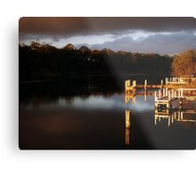 Duck Arm Metal Print