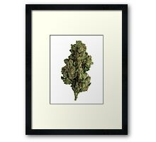 Skywalker OG Framed Print