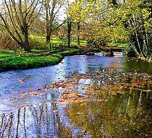 A  Spring Stream by Allan McKean