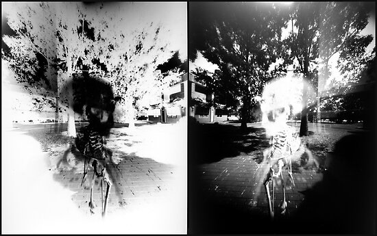 Pinhole Bones #1...doubled by Juilee  Pryor