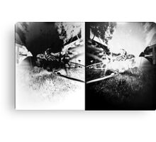 Pinhole Bones #2... doubled Canvas Print