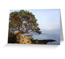 Slivers of Moments Greeting Card