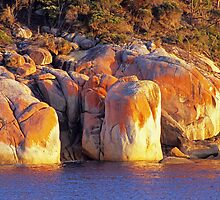 Refuge Cove Point by Travis Easton