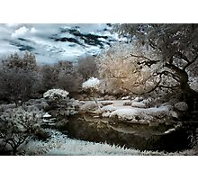 Japanese Fantasy Photographic Print