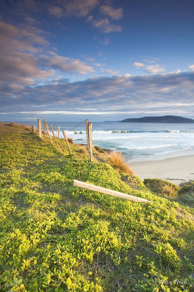Goats Beach, Tasmania by Alex Wise