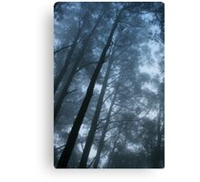 Saturday Fog Canvas Print