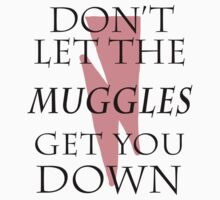 Don't Let The Muggles Get You Down. by dalekstella