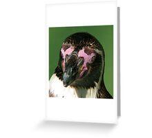 Pink face, black foot... Greeting Card