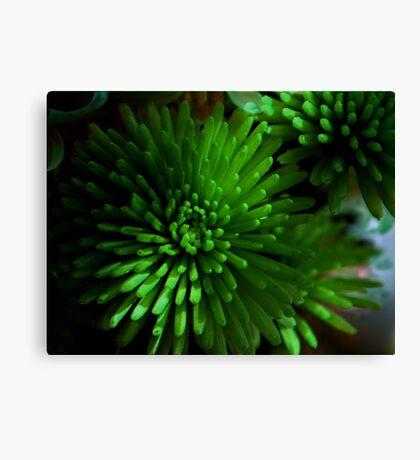 Green Flower Canvas Print