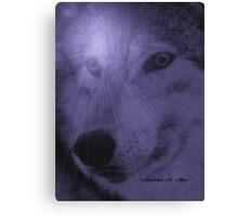 WOLF ~ DREAM SPIRIT Canvas Print
