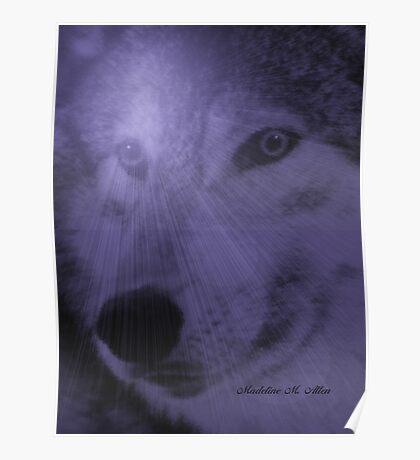 WOLF ~ DREAM SPIRIT Poster