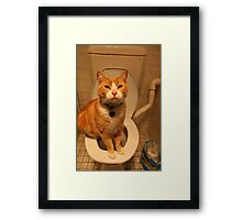 Toilet Trained Cat Framed Print