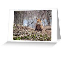 Kit Fox 2011-1 Greeting Card