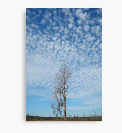 Cypress Under a Popcorn Sky Canvas Print