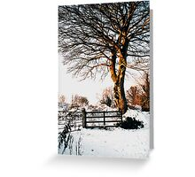 Snow and sunshine Greeting Card