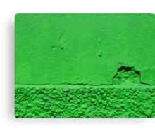 A green sunset Canvas Print