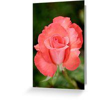 Cobra Rose Greeting Card