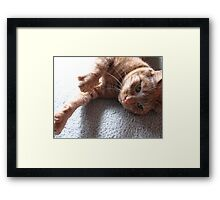 reaching out to you Framed Print