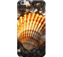 Sunlit Shell & Fragments #2 iPhone Case/Skin