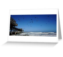 Pigeons At The Beach Greeting Card