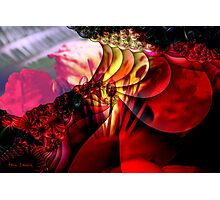 To Light Your Heart with Natural Flames  ... ! N Photographic Print