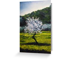 ALMOND TREE IN BLOSSOM - very much inspired by impressionist masters... Van Gogh, Monet, Pissaro, Renoir...  Greeting Card