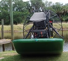 Airboat by florene welebny
