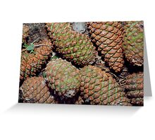 Cones Greeting Card
