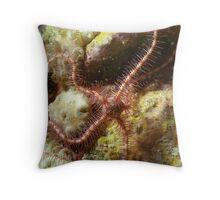 Brittle Star Throw Pillow
