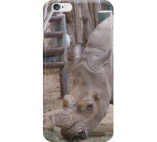 magestic rhino from az iPhone Case/Skin