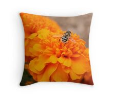 Orange Marmalade Throw Pillow