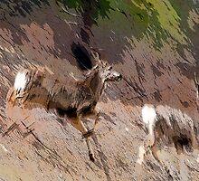 Bounding Deer by Ilene Baumgardner