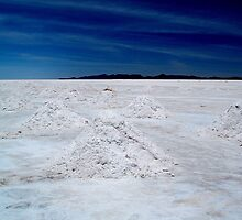 Salt Mounds by Honor Kyne