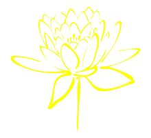 Lotus Flower Calligraphy (Yellow) Photographic Print