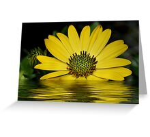 Beauty Of Yellow Greeting Card