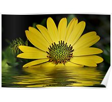 Beauty Of Yellow Poster