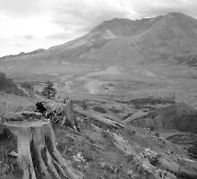 Mount St. Helens by chippedteacup