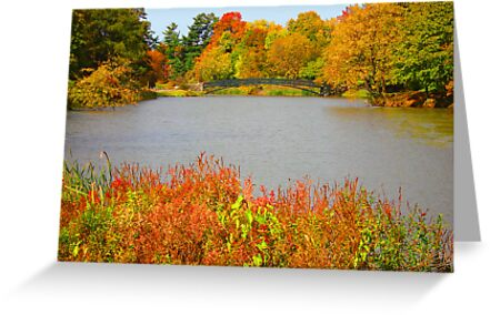 Celebrate Fall by Rosalie Scanlon