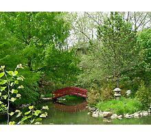 Japanese garden bridge Photographic Print
