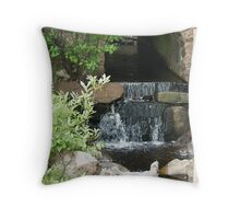 Carriage Road runoff Throw Pillow