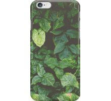 Wall Of Plants iPhone Case/Skin