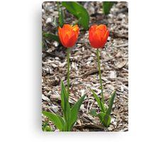 """Tulips"" Canvas Print"